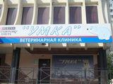 Клиника Умка, фото №1