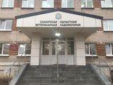 Клиника Государственная ветеринарная клиника, фото №2